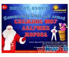 Новогодние представления в Костроме.