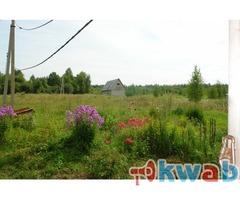 Сдаю земельный участок под крестьянско-фермерское хозяйство 20 гектаров