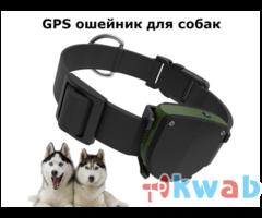 Водонепроницаемый GPS ошейник для собак